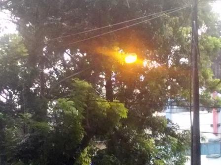 10590 medium lampu pju di jaksel banyak terhalang pohon