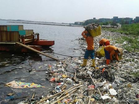 1239 medium pantai pulau panggang dipenuhi sampah