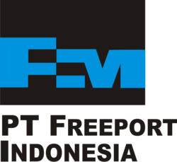 13008 small logo pt freeport