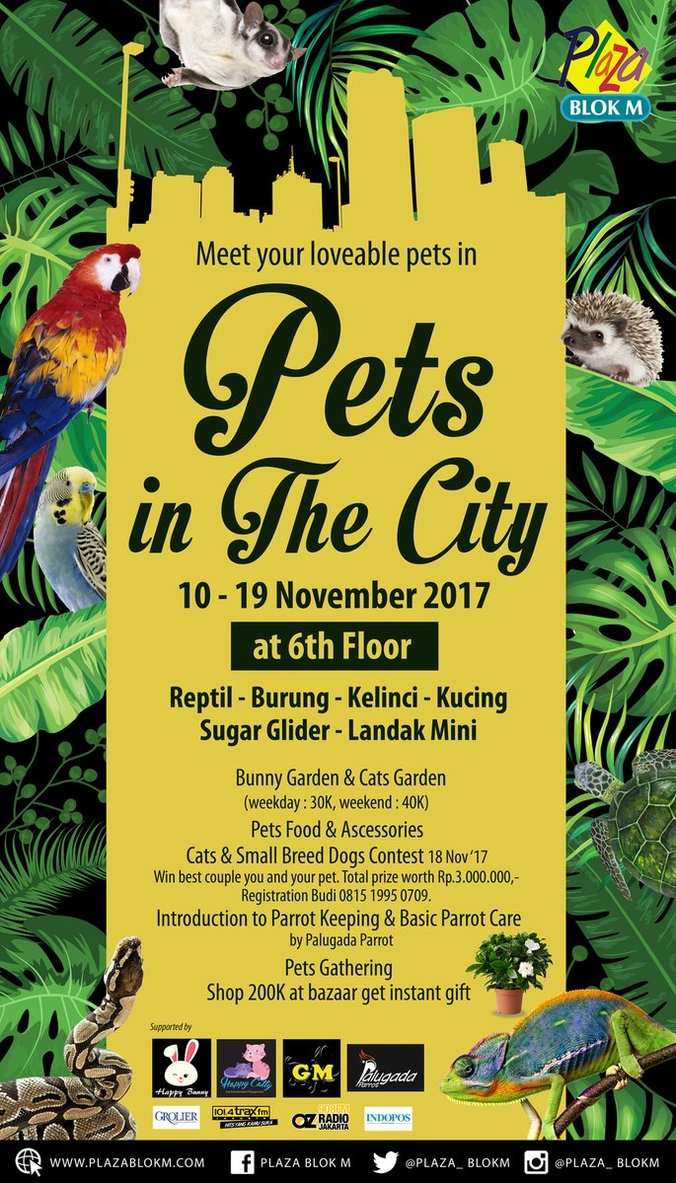 18231 medium hai pecinta satwa  ayo kunjungi pets in the city %e2%80%93 plaza blok m