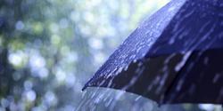 2041 small hujan