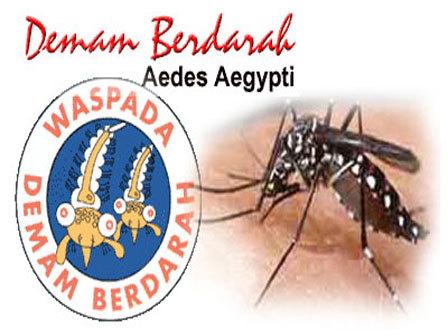 2170 medium banyak sekolah di duren sawit ditemukan jentik nyamuk