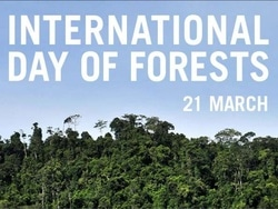 22959 small hari hutan internasional   21 maret 2018