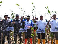 23481 small 1.000 bibit mangrove ditanam di muara angke