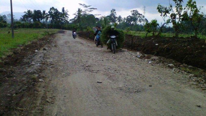 25326 medium rusak dua tahun  warga pulau panggung ingin perbaikan jalan