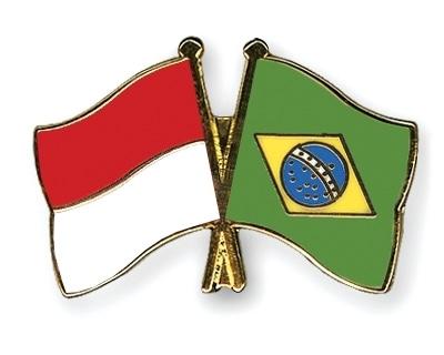 25409 medium warga negara indonesia segera bebas visa ke brasil