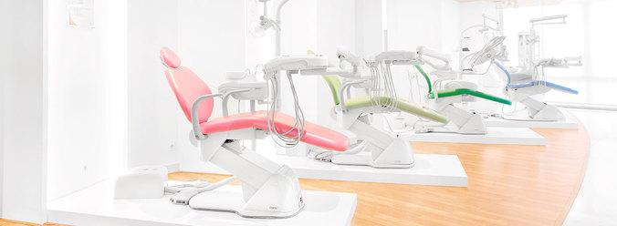27775 medium administrasi   admin sales pt cobra dental indonesia