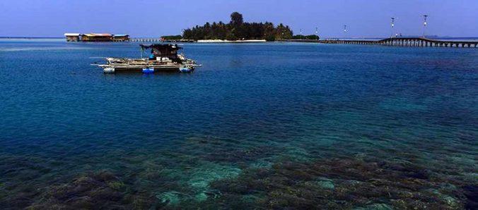28078 medium ot   pulau pramuka %282%29