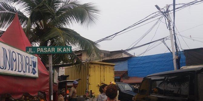 2911 medium pasar ikan
