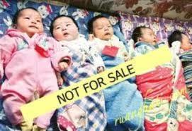 2945 medium penjualan bayi