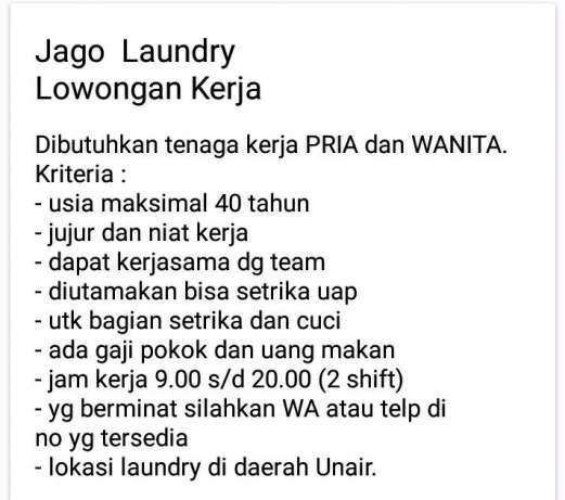 31052 medium lowongan kerja jago laundry