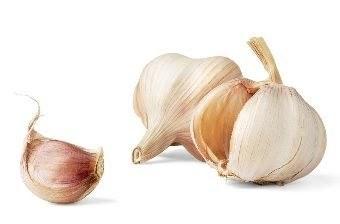 31769 medium manfaat bawang putih