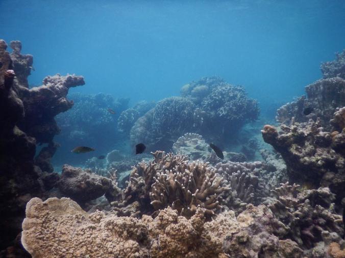 31875 medium landscape pulau harapan kili kili adventure %283%29
