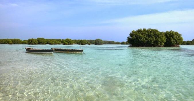 34297 medium pulau pari