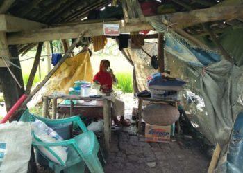 34456 medium ilustrasi kemiskinan di brebes nenek tinggal di gubuk 350x250