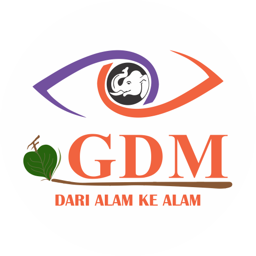 35133 medium icon gdm