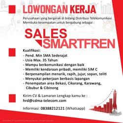 36243 small loker sales  smart