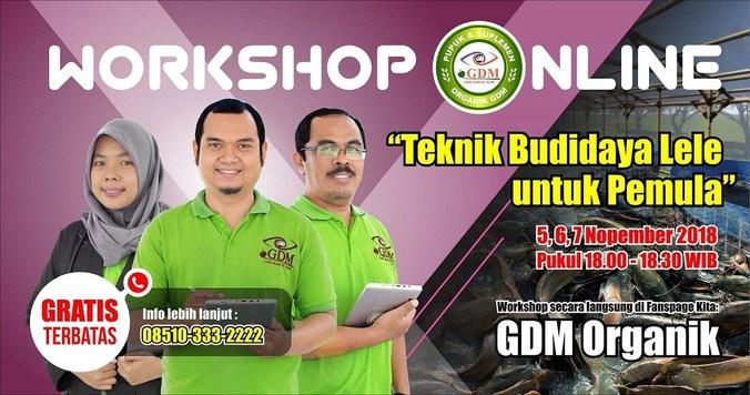 36578 medium workshop online gratis dengan tema %e2%80%9ctenik budidaya lele untuk pemula%e2%80%9d sekarang!