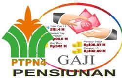 36749 small lowongan kerja bumn   ptpn iv untuk bidang tanaman