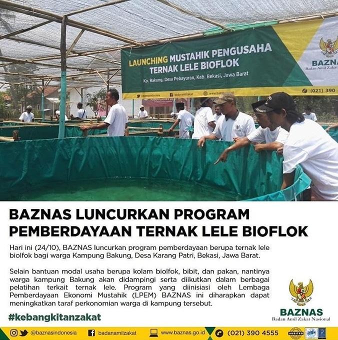 36985 medium baznas luncurkan program pemberdayaan ternak lele bioflok di kampung bakung