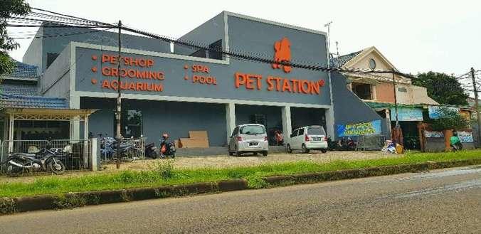 38230 medium pegawai pet shop