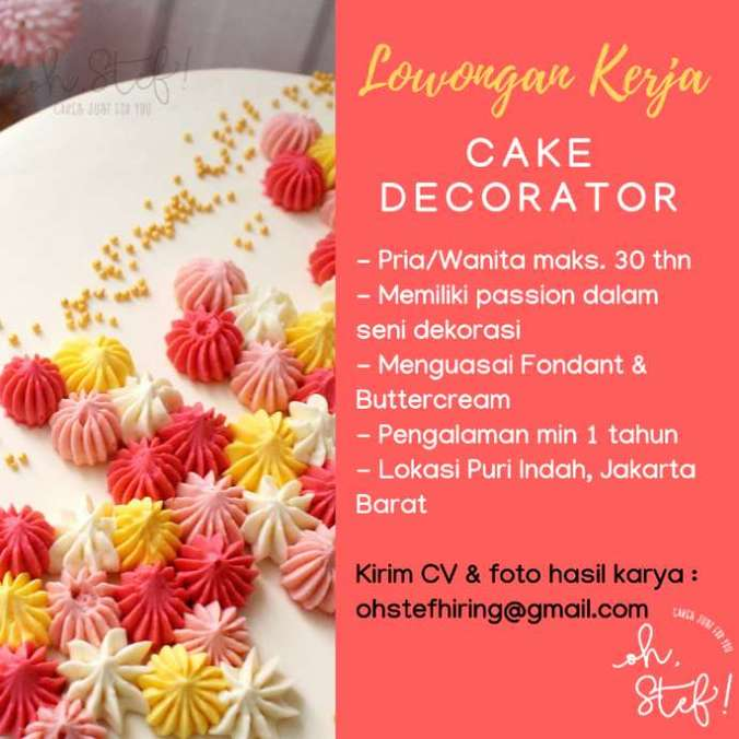 38696 medium dicari cake decorator home bakery