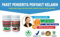 38901 small obat kencing nanah 123232