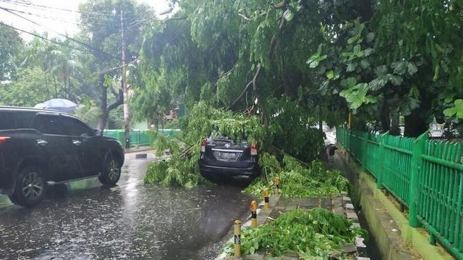 40816 medium 20181126pohon tumbang di alun alun kota bekasi menimpa mobil