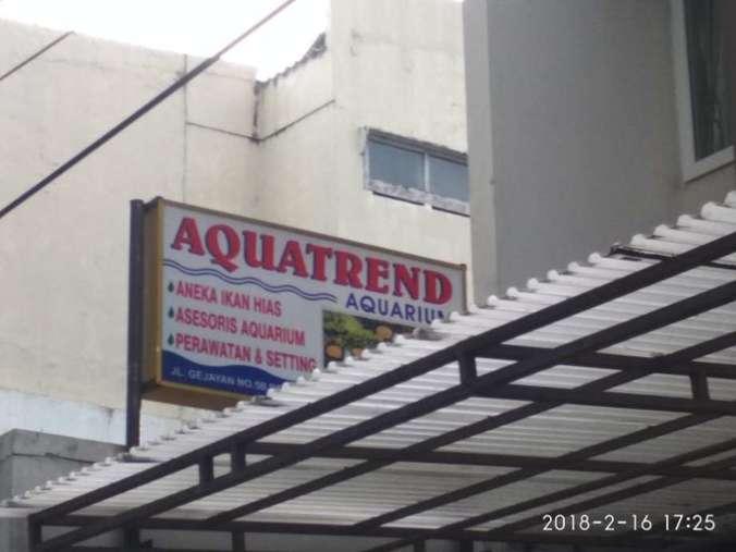 42013 medium lowongan kerja karyawan toko ikan hias