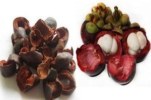 42030 medium e5fd9f94 manfaat kulit manggis tradisional