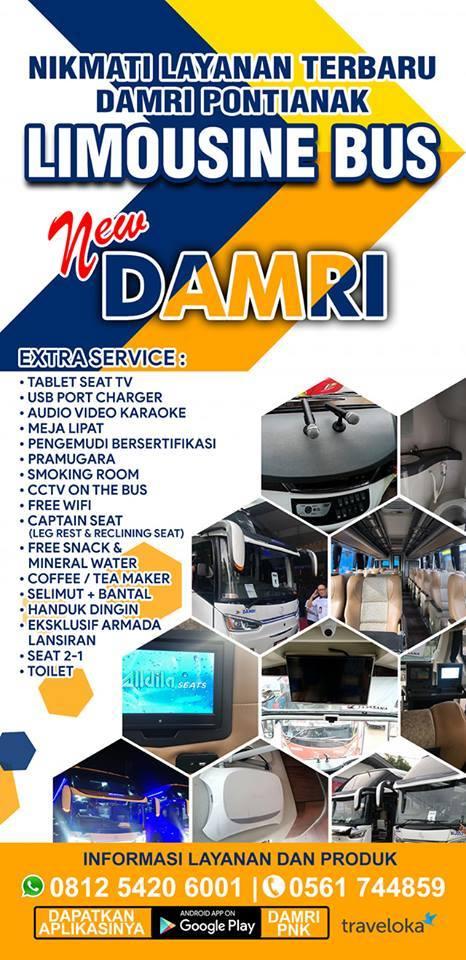 44117 medium damri limousine bus