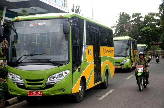 44624 medium bus transpatriot