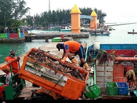 46529 medium 70 kubik sampah diangkut dari pulau pramuka