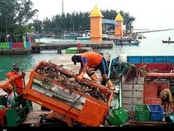 46529 small 70 kubik sampah diangkut dari pulau pramuka