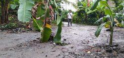 47855 small jalan tanjung sari semarang rusak