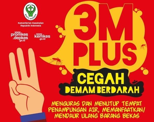 48149 medium 3 m plus 2