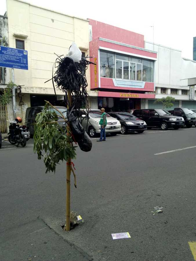 48222 medium 4. jalan tumbuh pohon