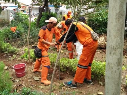 48955 medium kelurahan munjul miliki 1.200 lubang resapan biopori
