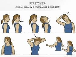 51237 small stretches neck