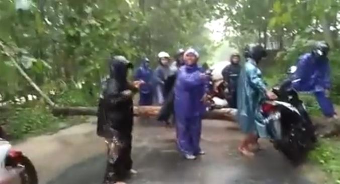 52626 medium informasi banjir  longsor  dan pohon tumbang di gendangsari gunungkidul  rabu  6 maret 2019