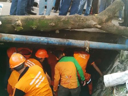 5489 medium lurah pasar manggis dikritik djarot soal sampah