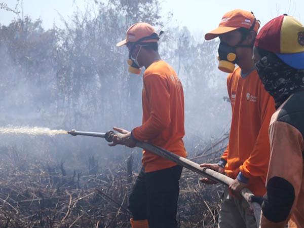 55077 medium 10 hektar lahan terbakar di sepakat ii pontianak
