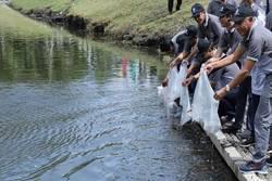 55214 small hari air sedunia  bupati sleman ajak warga jaga ekosistem lingkungan