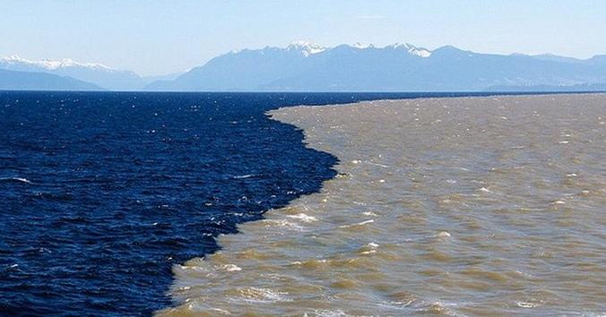 55402 medium ada dinding yang menghalangi tercampurnya air laut dan air tawar r036iofr7j