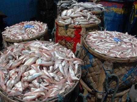 5667 medium 2 pasar di jakut masih ditemukan panganan berformalin