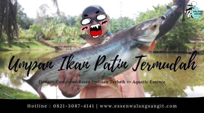 Racikan Umpan Jitu Ikan Patin Termudah 2019 Raja Essen Tasikmalaya Di Rancaekek Bandung Kabupaten 5 Apr 2019 Berita Warga Atmago Warga Bantu Warga