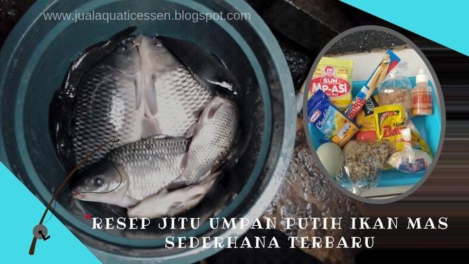 Resep Jitu Umpan Putih Ikan Mas Sederhana Terbaru 2019 Jaya Essen Di Balik Bukit Lampung Barat 5 Apr 2019 Berita Warga Atmago Warga Bantu Warga