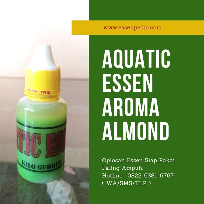 57905 medium aquatic essen hijau