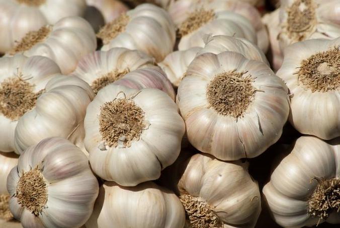 59579 medium harag bawang putih merangkak naik  disdag malang gelar operasi pasar