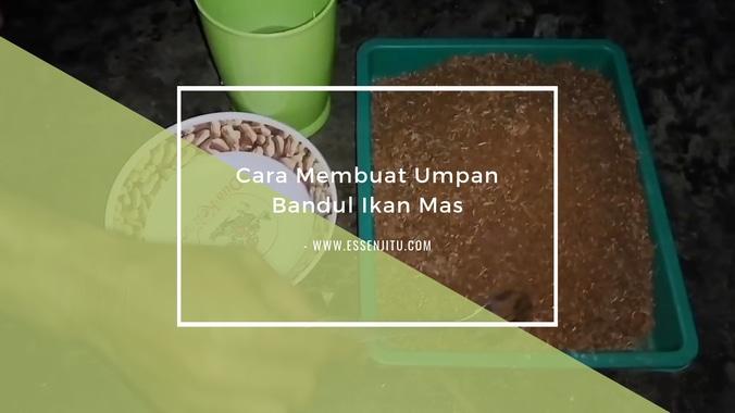 Cara Membuat Umpan Bandul Ikan Mas Paling Mantul Jaya Essen Di Kelapa Gading Jakarta Utara 25 Apr 2019 Berita Warga Atmago Warga Bantu Warga